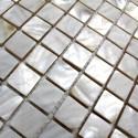 carrelage mosaique en nacre 1 plaque N1