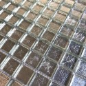 Glass mosaic tiles for bathroom and shower kitchen hedra-argent