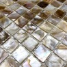 Mosaic mother of pearl 1sqm Nacre naturel