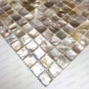 Mosaic mother of pearl 1sqm Nacre naturel